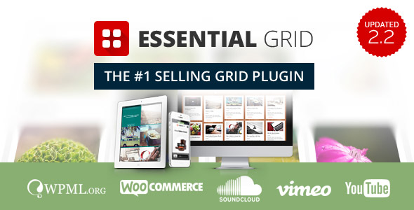 essentialgrid_largepreview-jpg.77